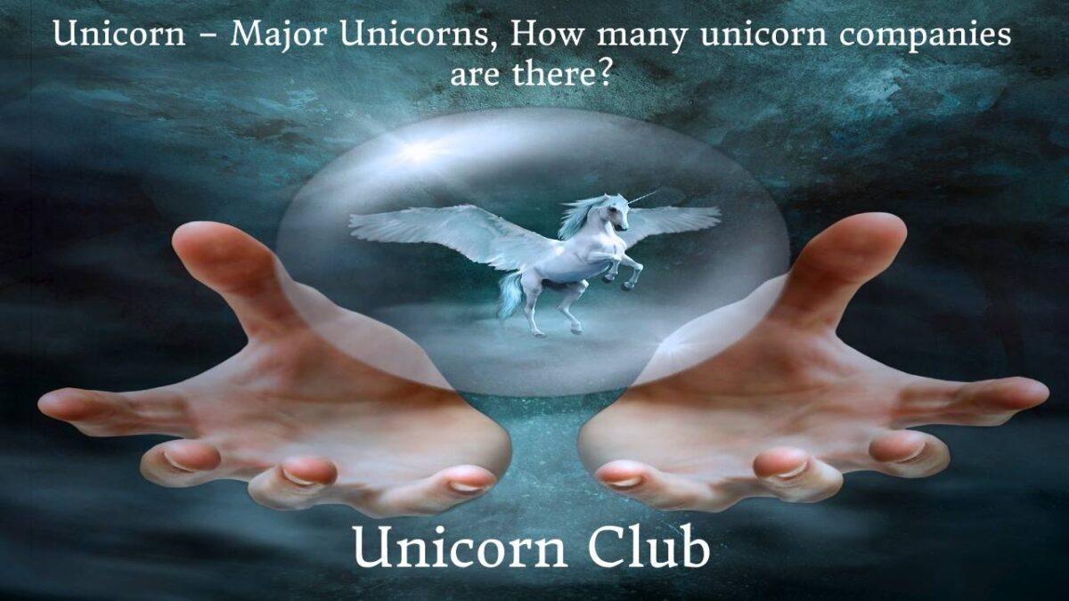 Unicorn – Major Unicorns, How many unicorn companies are there?