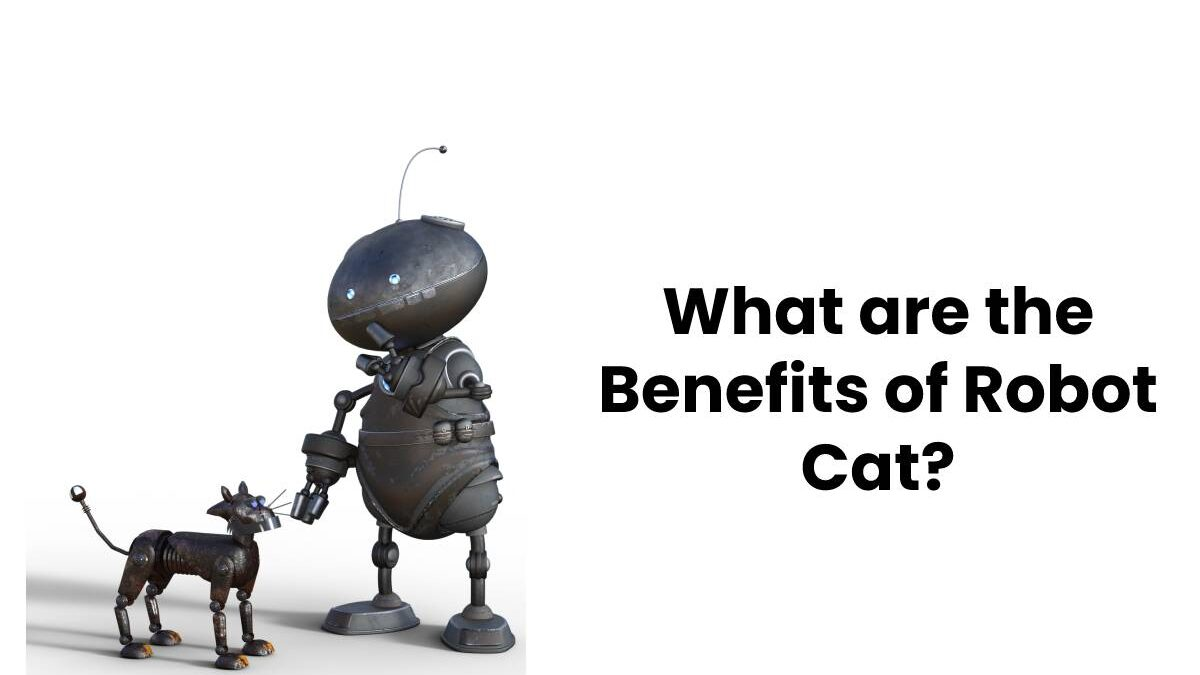 What are the Benefits of Robot Cat?